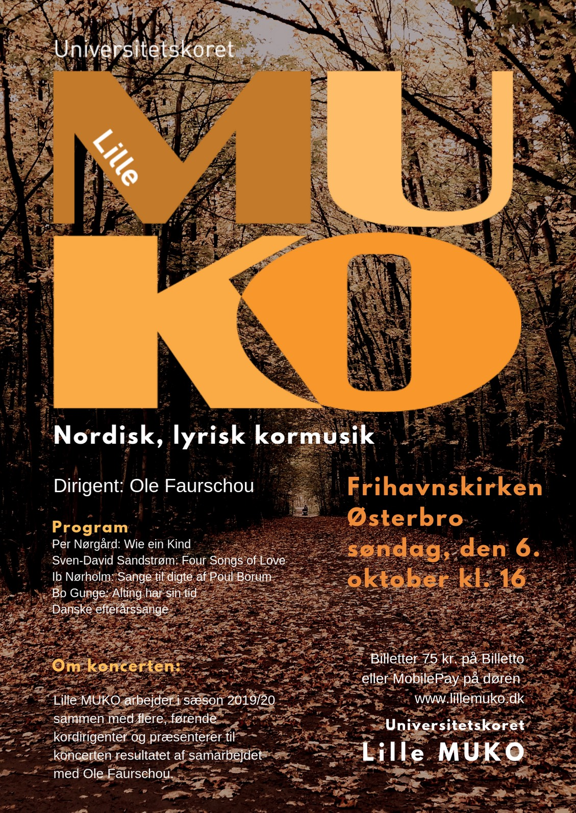 Nordic, lyrical choral music - The University Choir Lille MUKO - Classical choir in Copenhagen